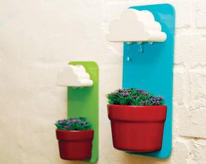 Rainypot-
