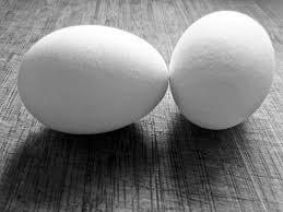 I gusci d'uovo tritati porteranno calcio alle piante. Mischiamoli al terreno.
