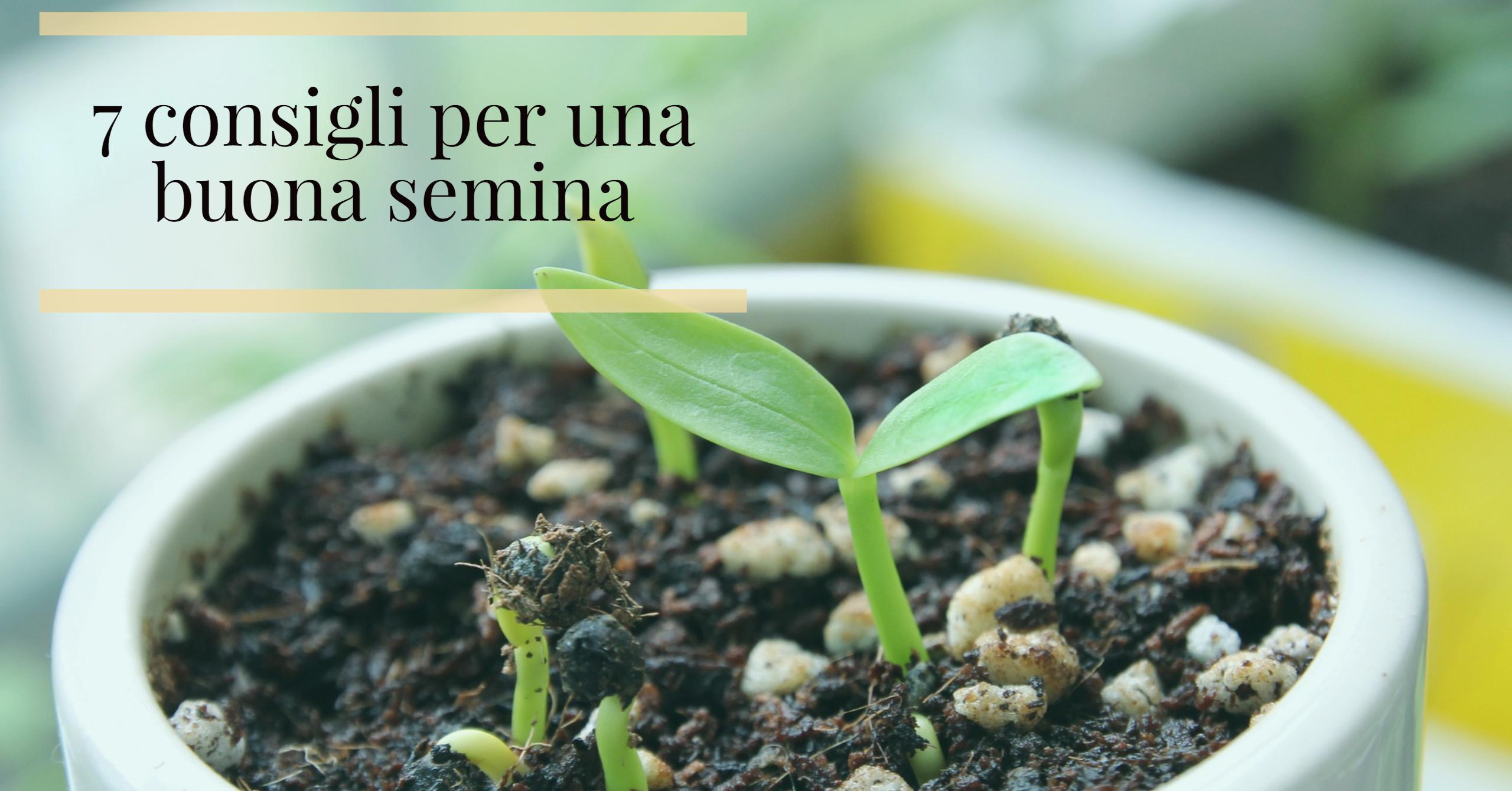 7 consigli utili per la semina !