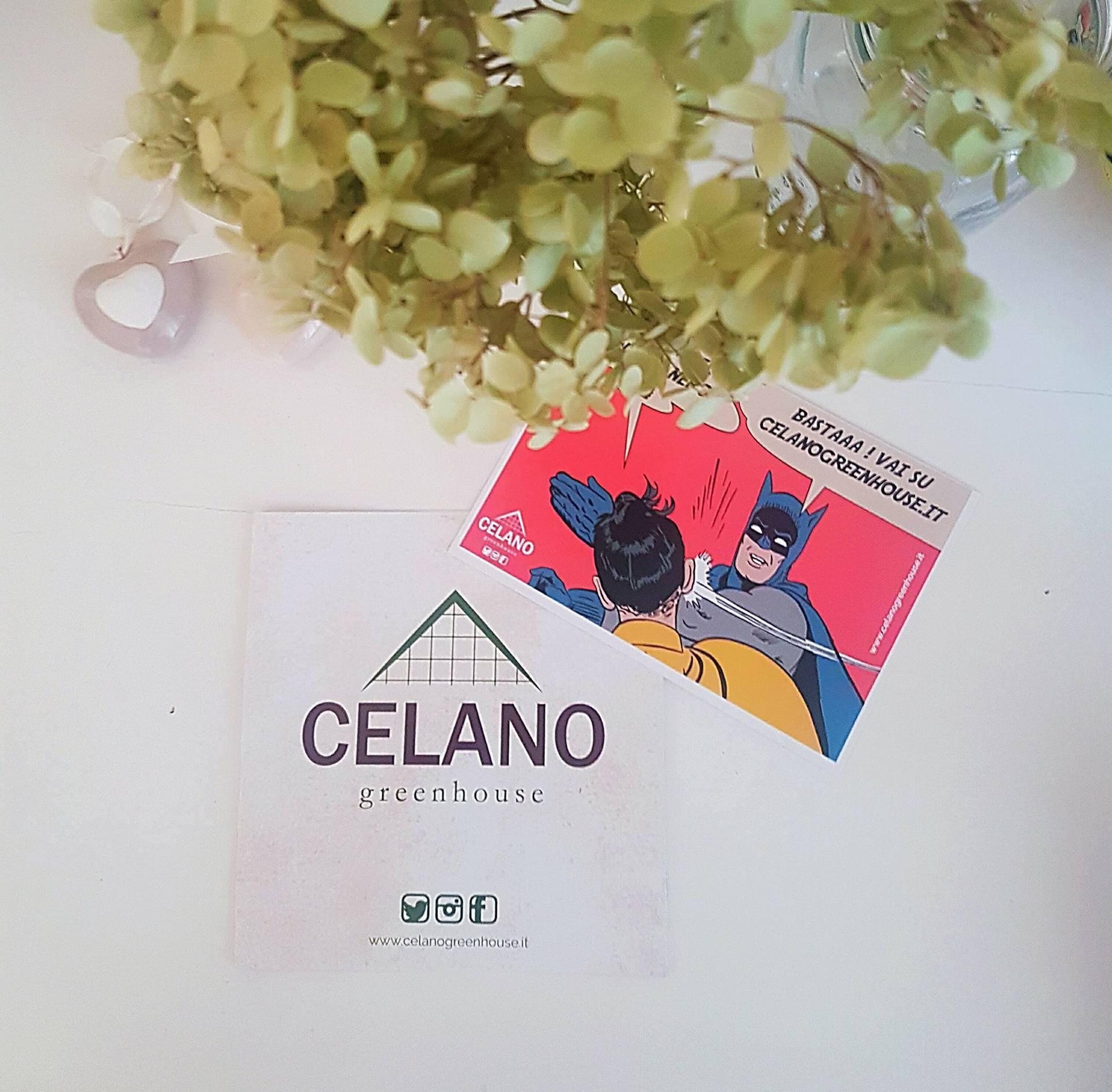 Amici e scoperte green : Celano Greenhouse