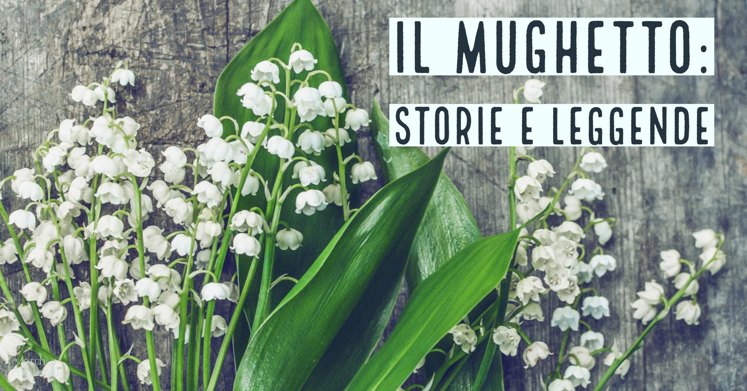 Il mughetto: storie e leggende.