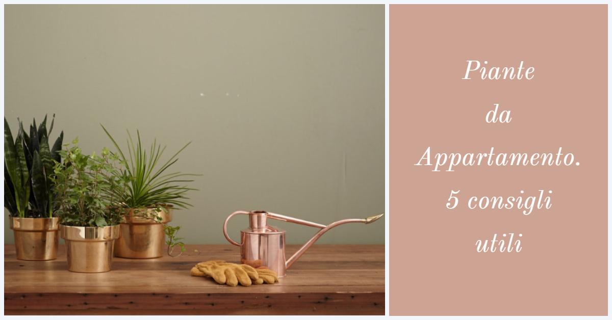 Piante da Appartamento. 5 Consigli per la loro cura.