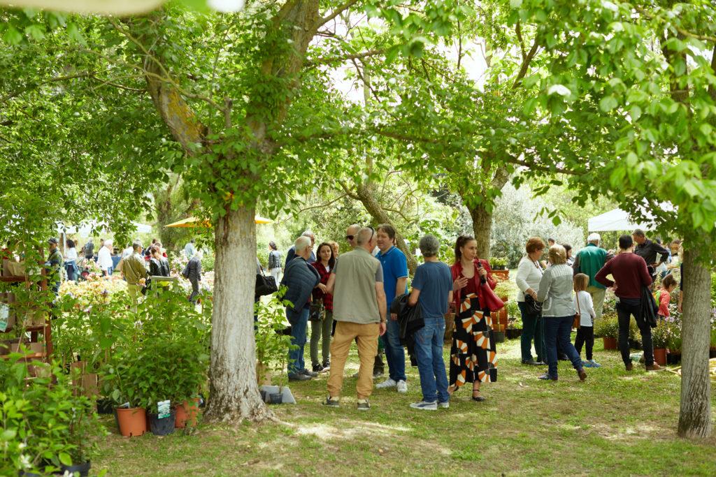 Verdi E Contenti Settembre Al Centro Botanico Moutan Evento